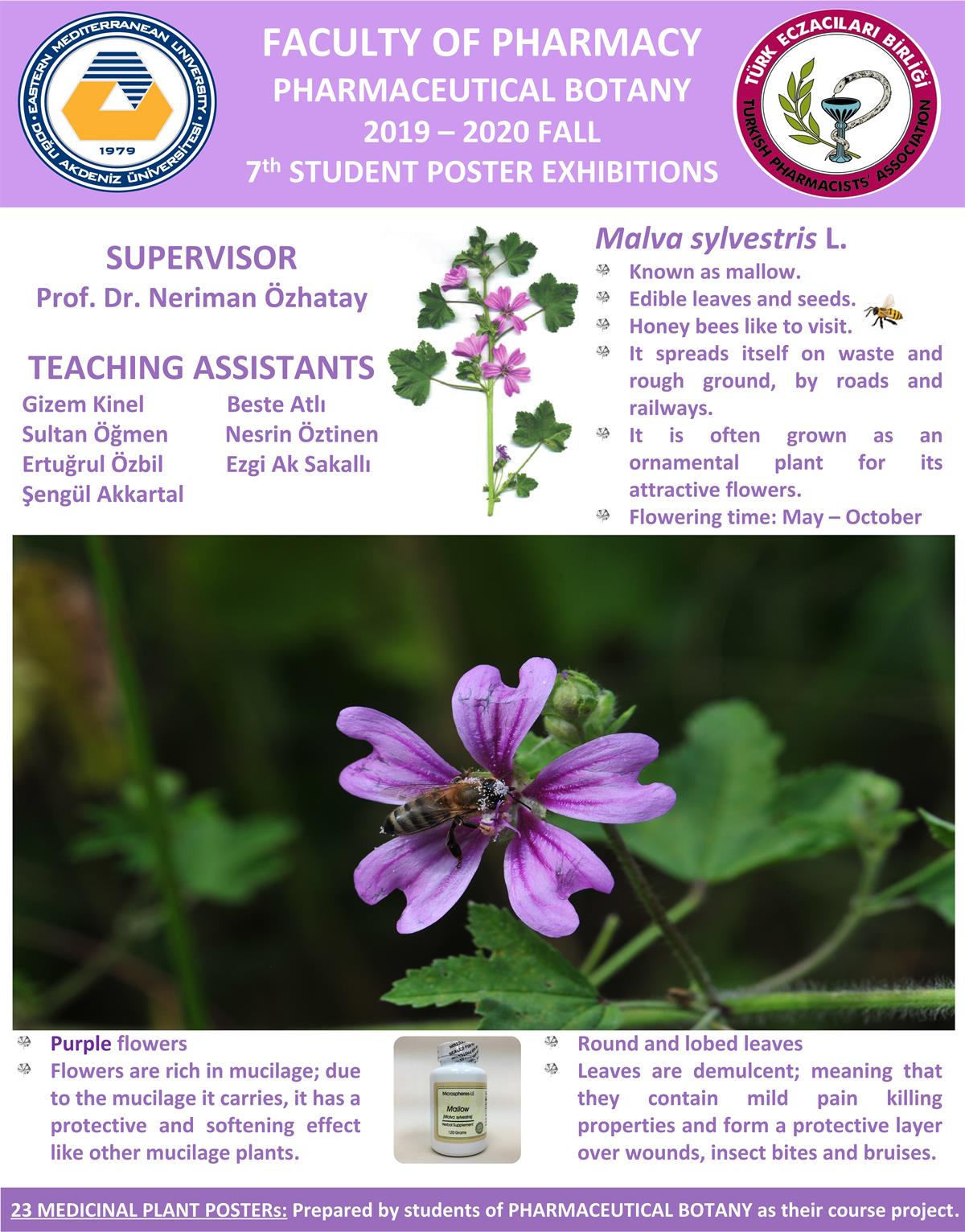 2019-2020 FALL 7th STUDENT POSTER EXHIBITIONS OF PHARMACEUTICAL BOTANY